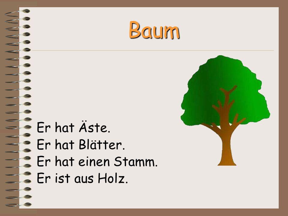 Baum Er hat Äste. Er hat Blätter. Er hat einen Stamm. Er ist aus Holz.