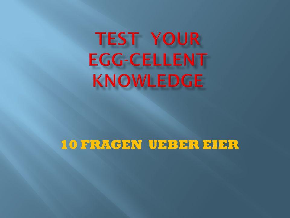 10 FRAGEN UEBER EIER