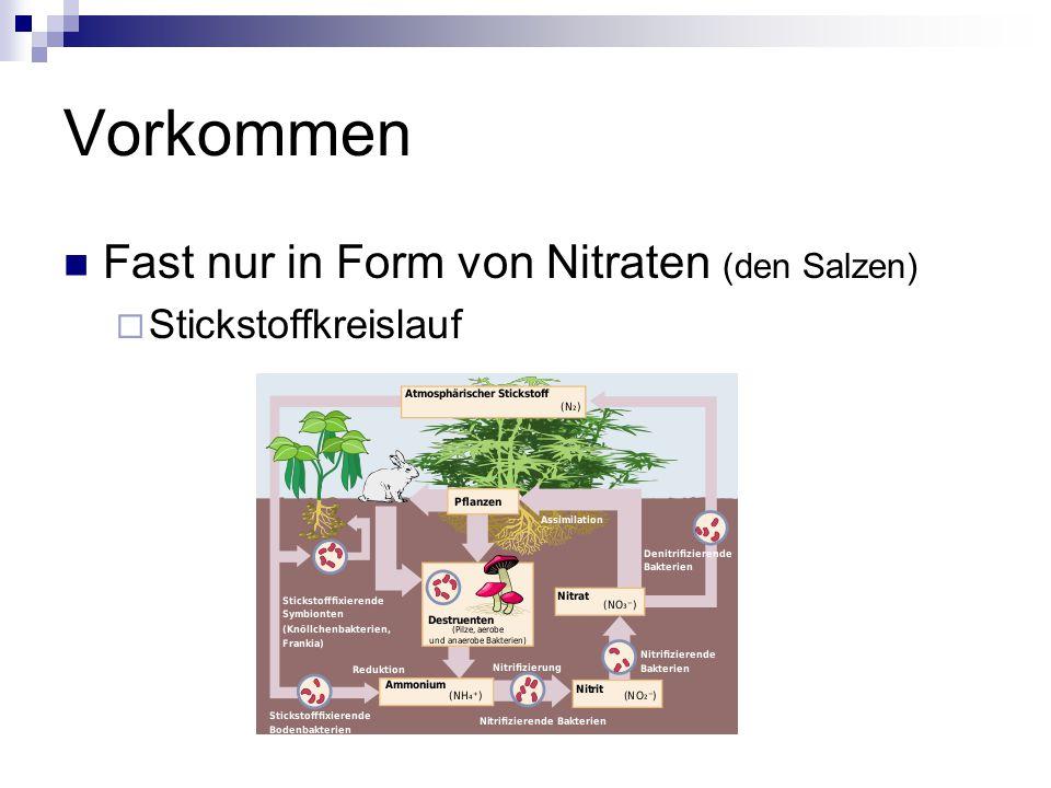 Vorkommen Fast nur in Form von Nitraten (den Salzen)  Stickstoffkreislauf