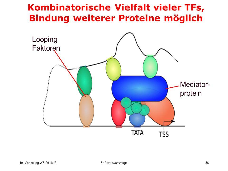 10. Vorlesung WS 2014/15Softwarewerkzeuge36 Kombinatorische Vielfalt vieler TFs, Bindung weiterer Proteine möglich Mediator- protein Looping Faktoren