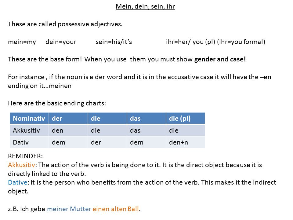 Mein, dein, sein, ihr These are called possessive adjectives.