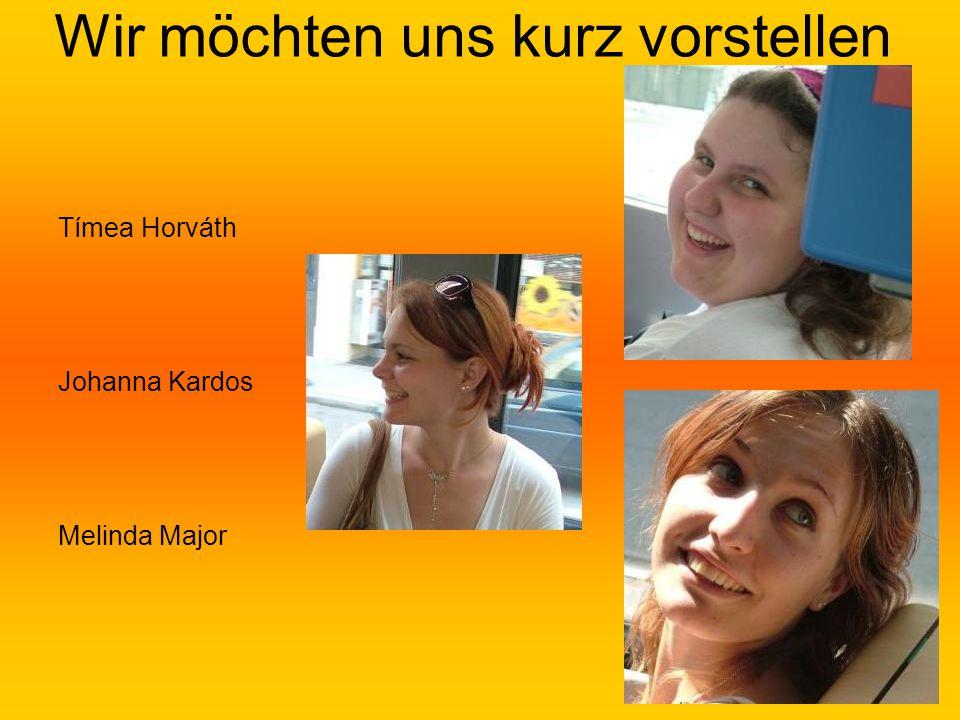2 Wir möchten uns kurz vorstellen Tímea Horváth Johanna Kardos Melinda Major