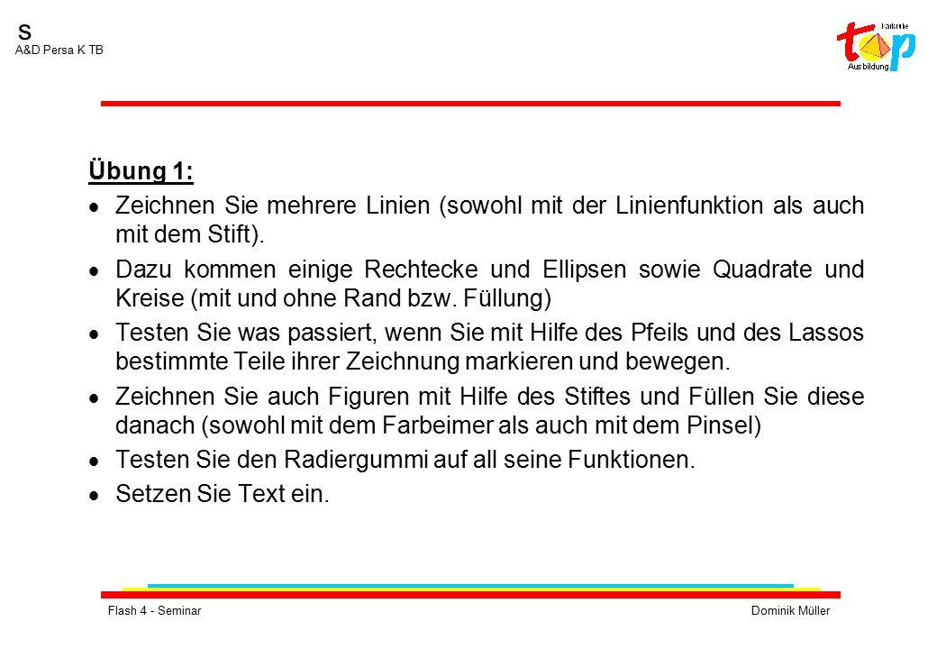 Flash 4 - SeminarDominik Müller s A&D Persa K TB Übung 1:  Zeichnen Sie mehrere Linien (sowohl mit der Linienfunktion als auch mit dem Stift).  Dazu