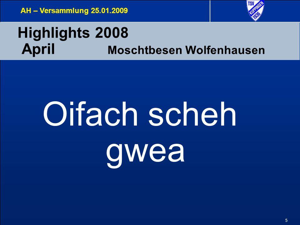 5 Highlights 2008 April Moschtbesen Wolfenhausen AH – Versammlung 25.01.2009 Oifach scheh gwea