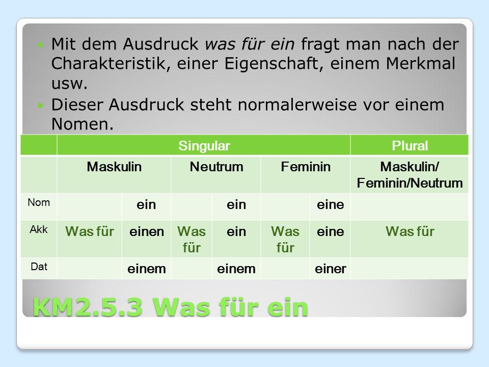 KM2.5.3 Was für ein Beispiele: Was für ein Buch hast du gelesen.