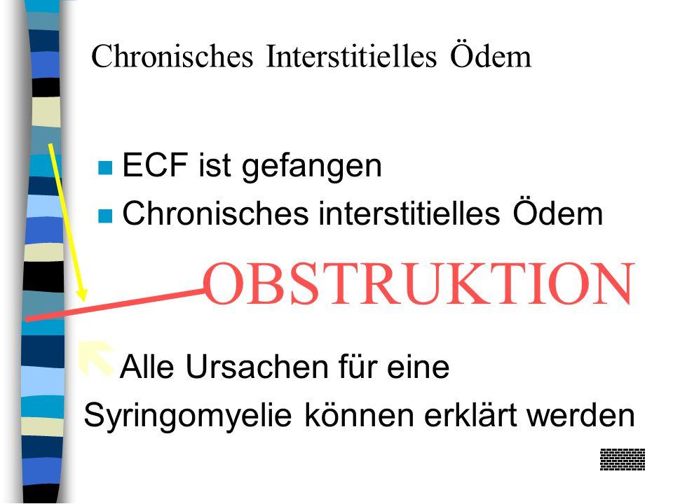 ECF ist gefangen Chronisches interstitielles Ödem  Alle Ursachen für eine Syringomyelie können erklärt werden Chronisches Interstitielles Ödem