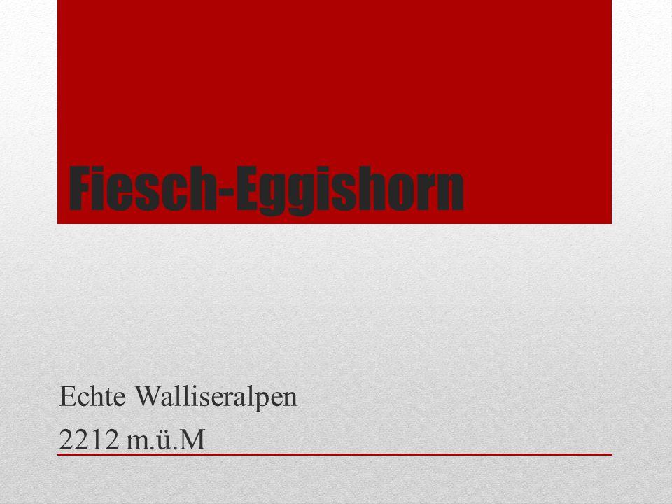 Fiesch-Eggishorn Echte Walliseralpen 2212 m.ü.M