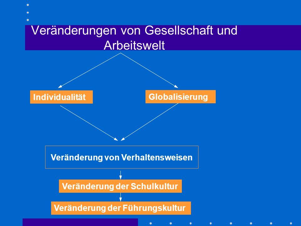 Veränderungen von Gesellschaft und Arbeitswelt Individualität Globalisierung Veränderung von Verhaltensweisen Veränderung der Schulkultur Veränderung