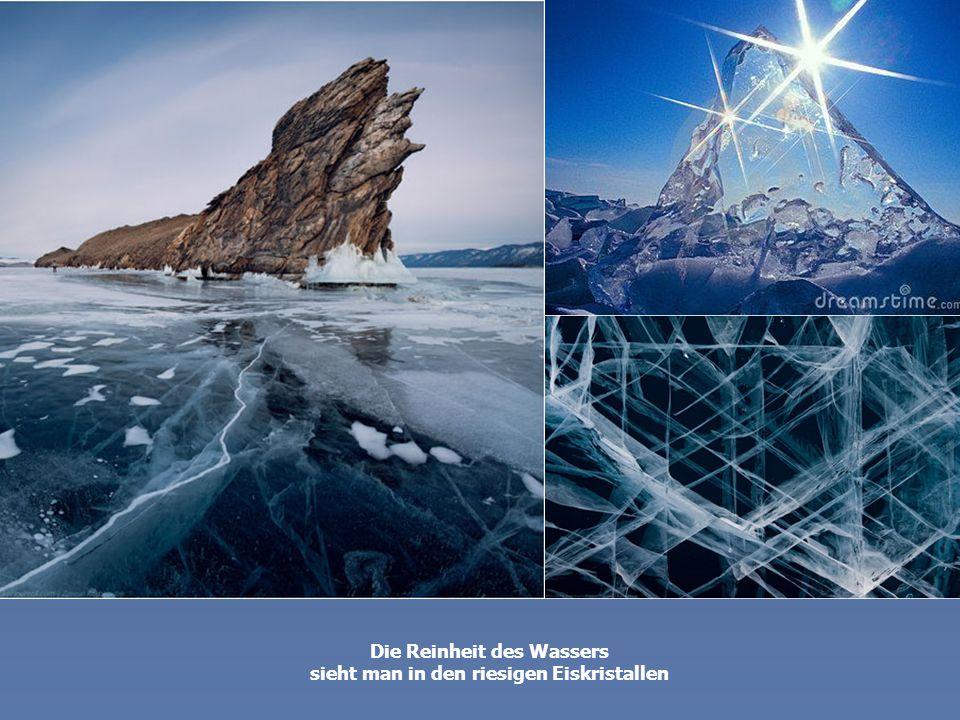 Die Reinheit des Wassers sieht man in den riesigen Eiskristallen