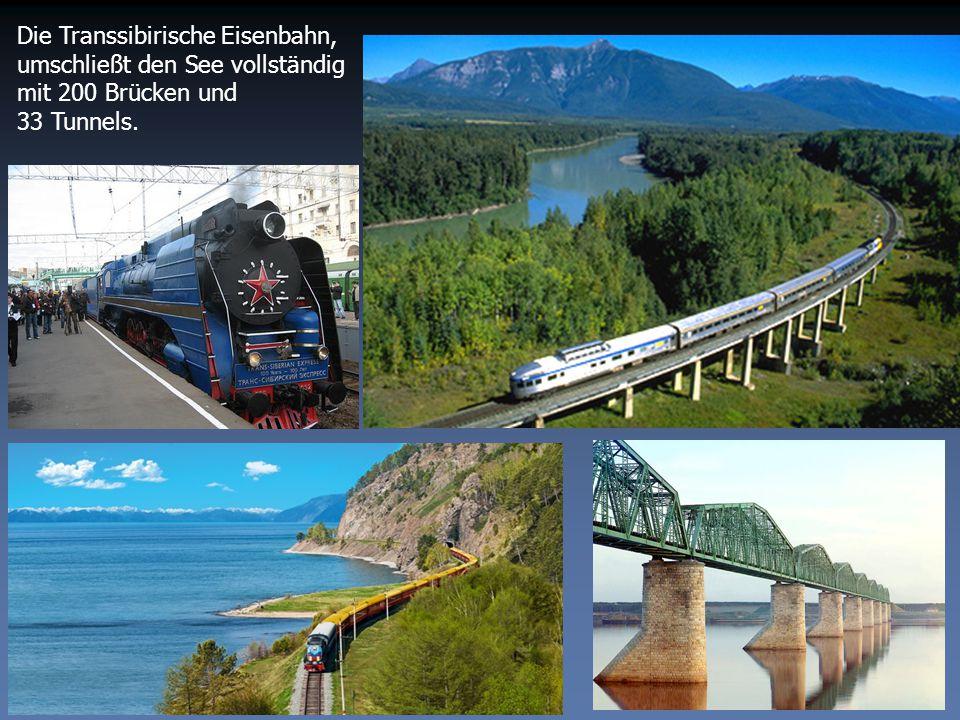 Die Transsibirische Eisenbahn, umschließt den See vollständig mit 200 Brücken und 33 Tunnels.