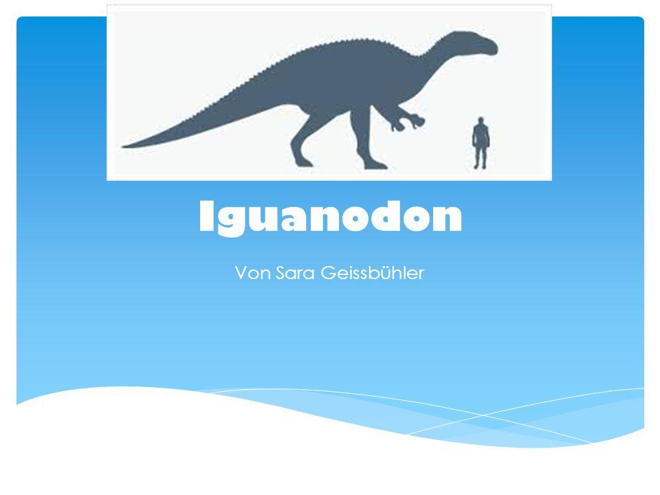 Iguanodon Von Sara Geissbühler