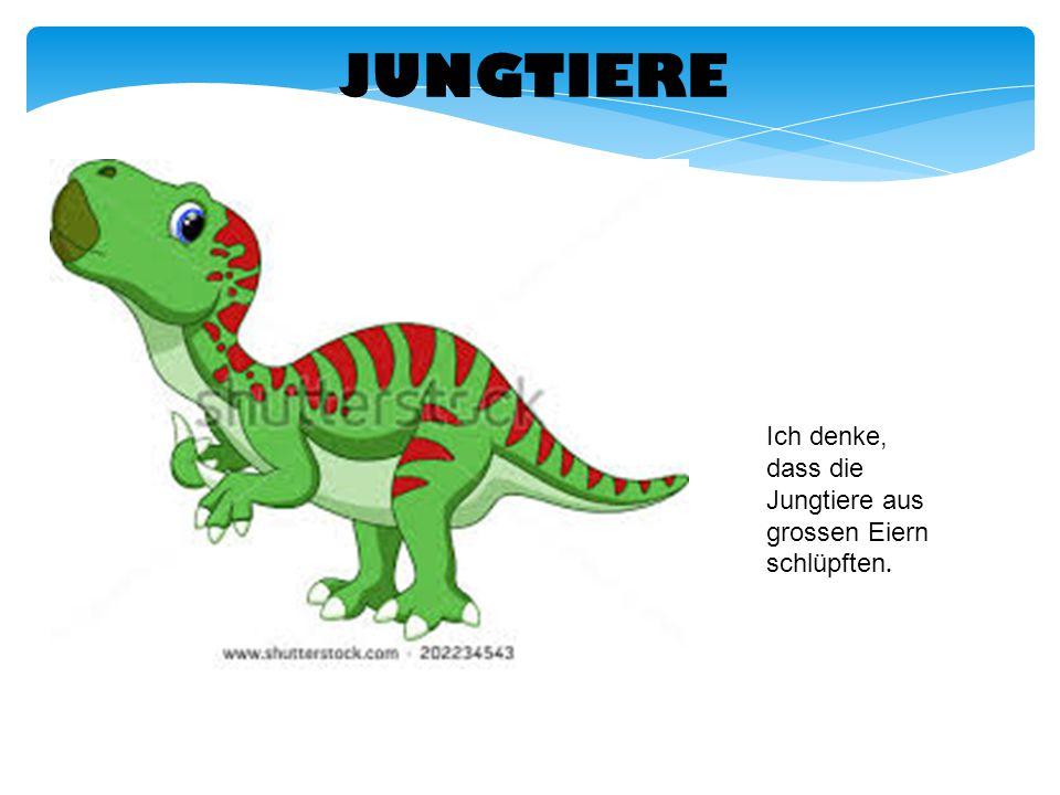 NAHRUNG Der Iguanodon war ein Pflanzenfresser.