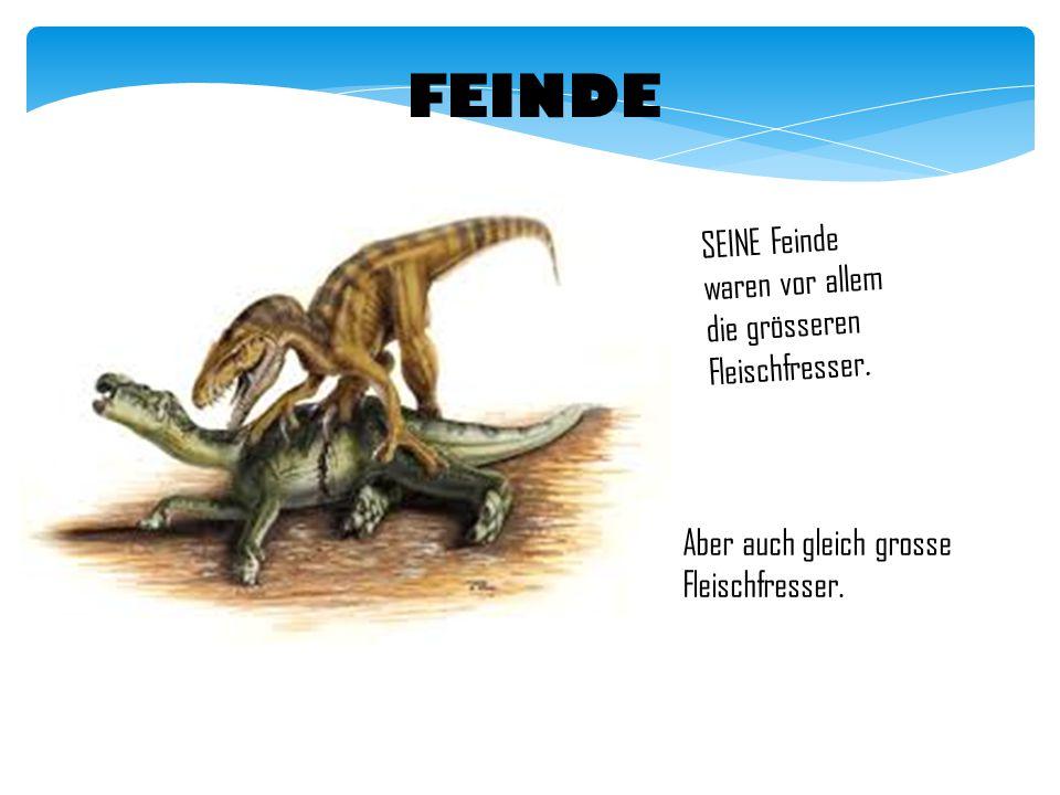 VERTEIDIGUNG Iguanodon hatte ein spitziges Daumendorn.
