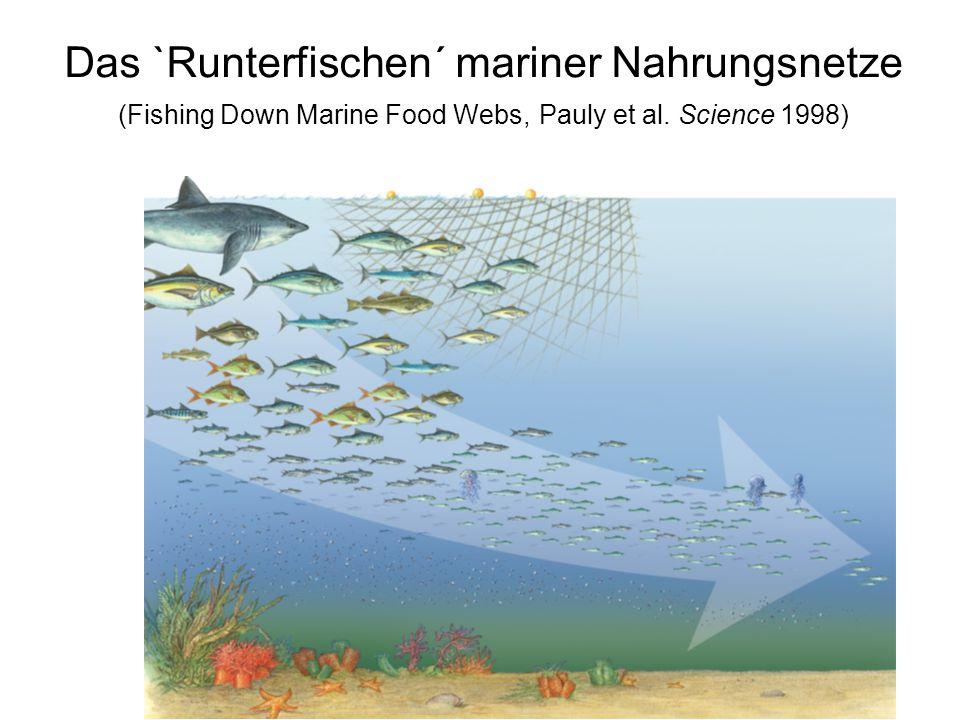 Das `Runterfischen´ mariner Nahrungsnetze (Fishing Down Marine Food Webs, Pauly et al. Science 1998)
