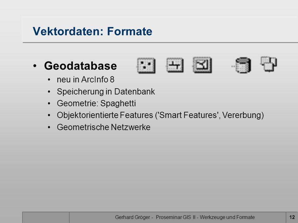 Gerhard Gröger - Proseminar GIS II - Werkzeuge und Formate12 Vektordaten: Formate Geodatabase neu in ArcInfo 8 Speicherung in Datenbank Geometrie: Spa