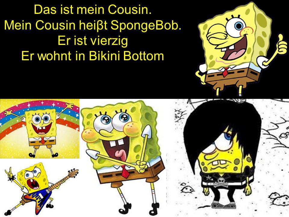 Das ist mein Cousin. Mein Cousin heiβt SpongeBob. Er ist vierzig Er wohnt in Bikini Bottom