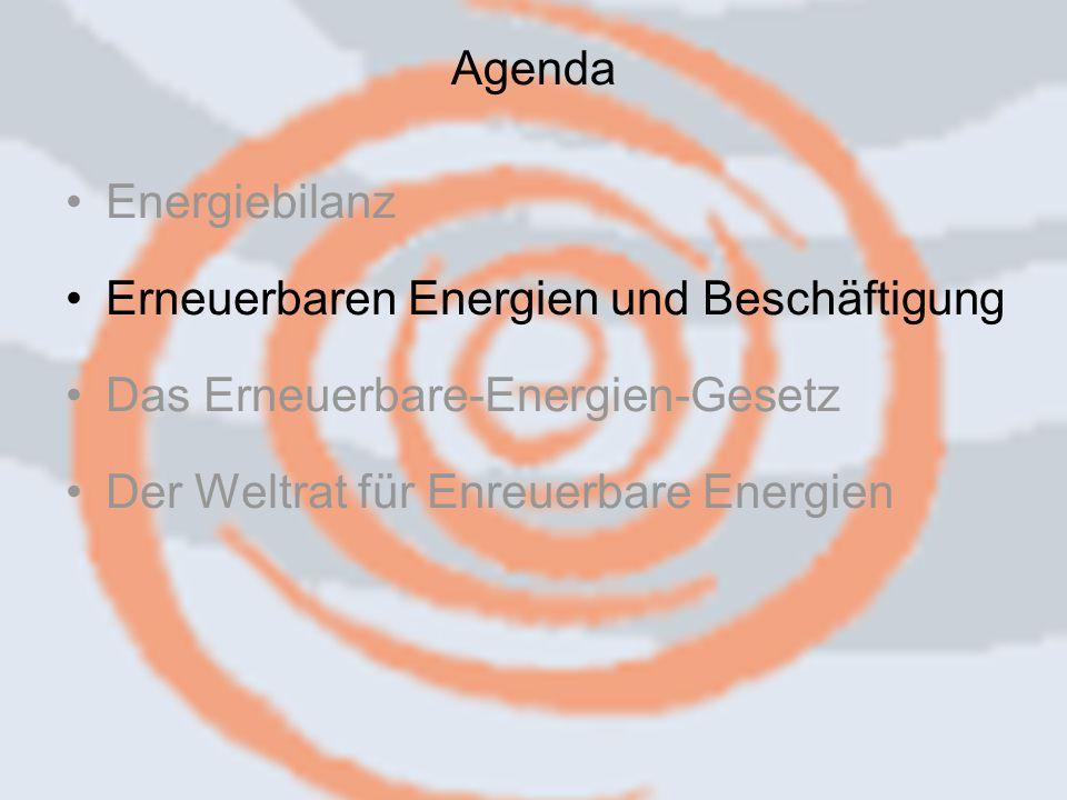 14.09.2006 Caren Herbstritt8 Energiebilanz Erneuerbaren Energien und Beschäftigung Das Erneuerbare-Energien-Gesetz Der Weltrat für Enreuerbare Energien Agenda