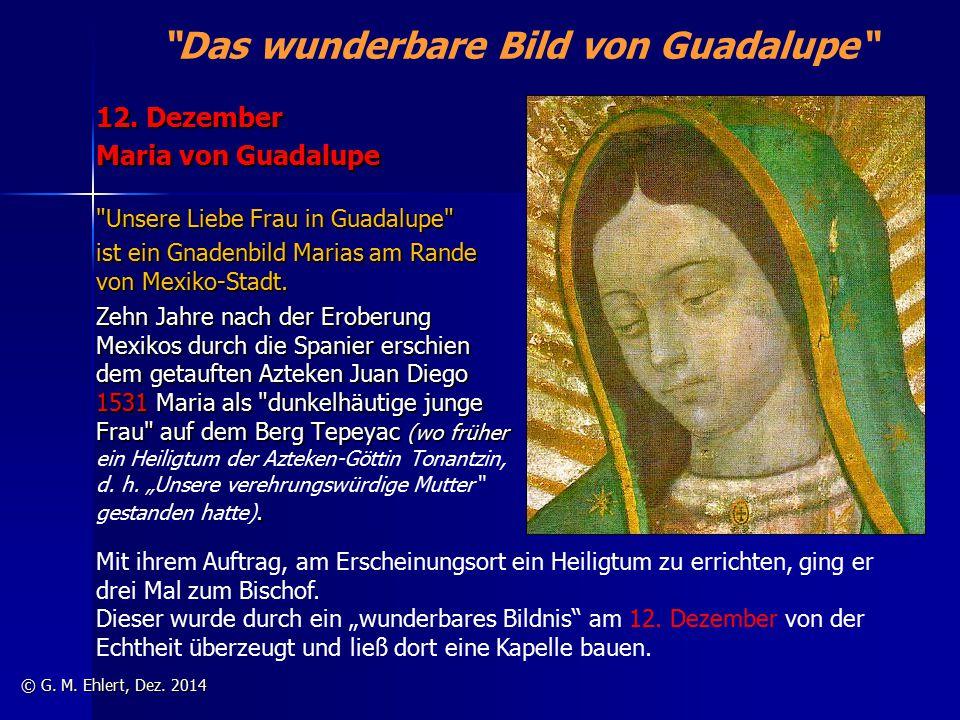"""""""Das wunderbare Bild von Guadalupe"""" 12. Dezember Maria von Guadalupe"""