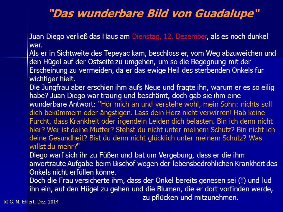 """""""Das wunderbare Bild von Guadalupe"""" © G. M. Ehlert, Dez. 2014 Juan Diego verließ das Haus am Dienstag, 12. Dezember, als es noch dunkel war. Als er in"""
