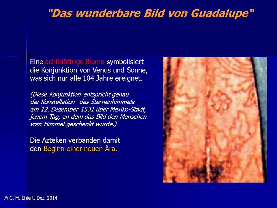 """""""Das wunderbare Bild von Guadalupe"""" © G. M. Ehlert, Dez. 2014 Eine achtblättrige Blume symbolisiert die Konjunktion von Venus und Sonne, was sich nur"""
