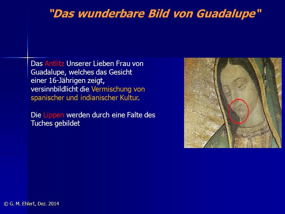 """""""Das wunderbare Bild von Guadalupe"""" © G. M. Ehlert, Dez. 2014 Das Antlitz Unserer Lieben Frau von Guadalupe, welches das Gesicht einer 16-Jährigen zei"""