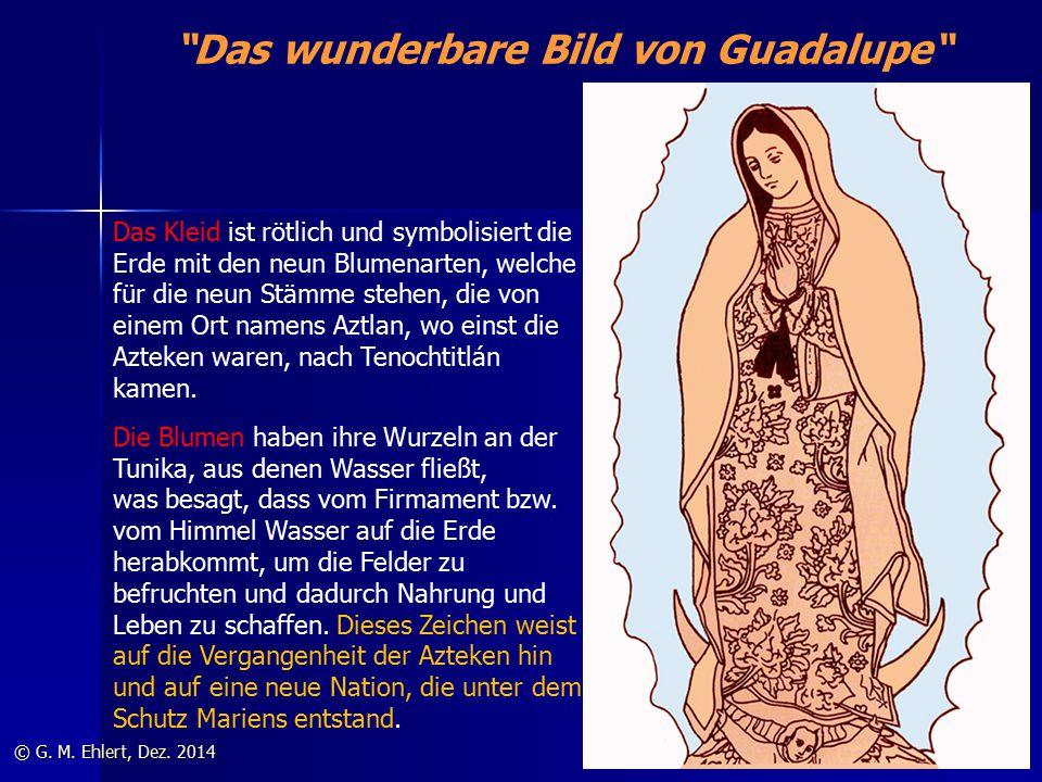 """""""Das wunderbare Bild von Guadalupe"""" © G. M. Ehlert, Dez. 2014 Das Kleid ist rötlich und symbolisiert die Erde mit den neun Blumenarten, welche für die"""