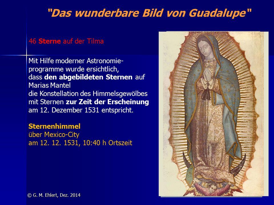 """""""Das wunderbare Bild von Guadalupe"""" © G. M. Ehlert, Dez. 2014 46 Sterne auf der Tilma Mit Hilfe moderner Astronomie- programme wurde ersichtlich, dass"""