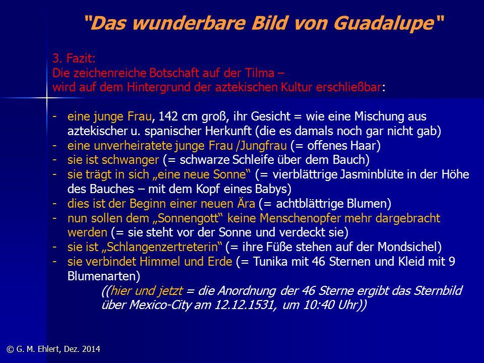 """""""Das wunderbare Bild von Guadalupe"""" © G. M. Ehlert, Dez. 2014 3. Fazit: Die zeichenreiche Botschaft auf der Tilma – wird auf dem Hintergrund der aztek"""