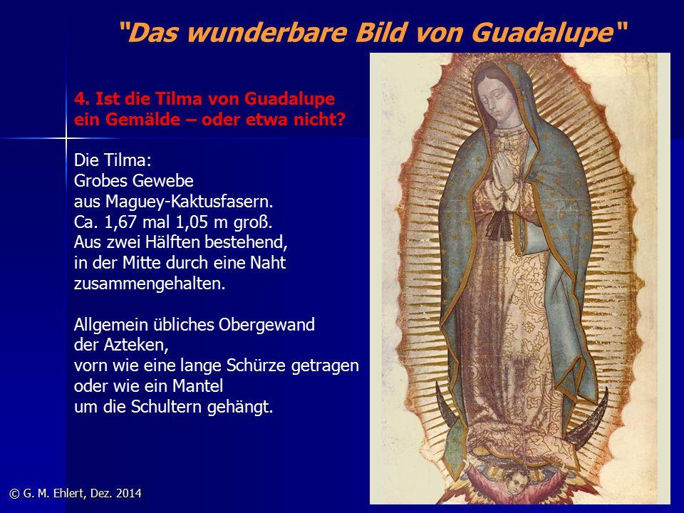 """""""Das wunderbare Bild von Guadalupe"""" © G. M. Ehlert, Dez. 2014 4. Ist die Tilma von Guadalupe ein Gemälde – oder etwa nicht? Die Tilma: Grobes Gewebe a"""
