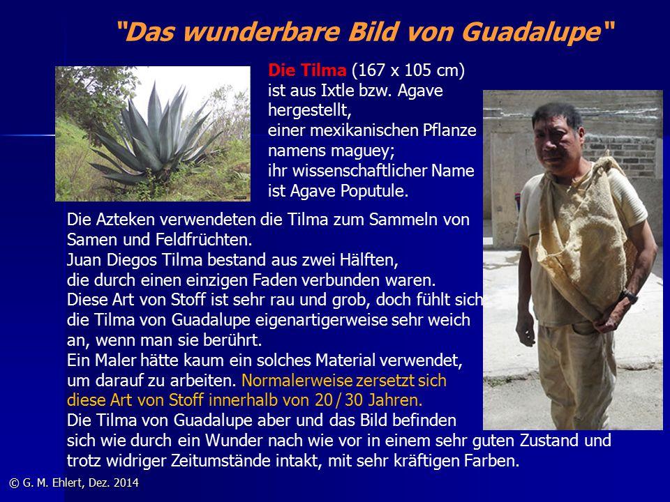 """""""Das wunderbare Bild von Guadalupe"""" © G. M. Ehlert, Dez. 2014 Die Tilma (167 x 105 cm) ist aus Ixtle bzw. Agave hergestellt, einer mexikanischen Pflan"""