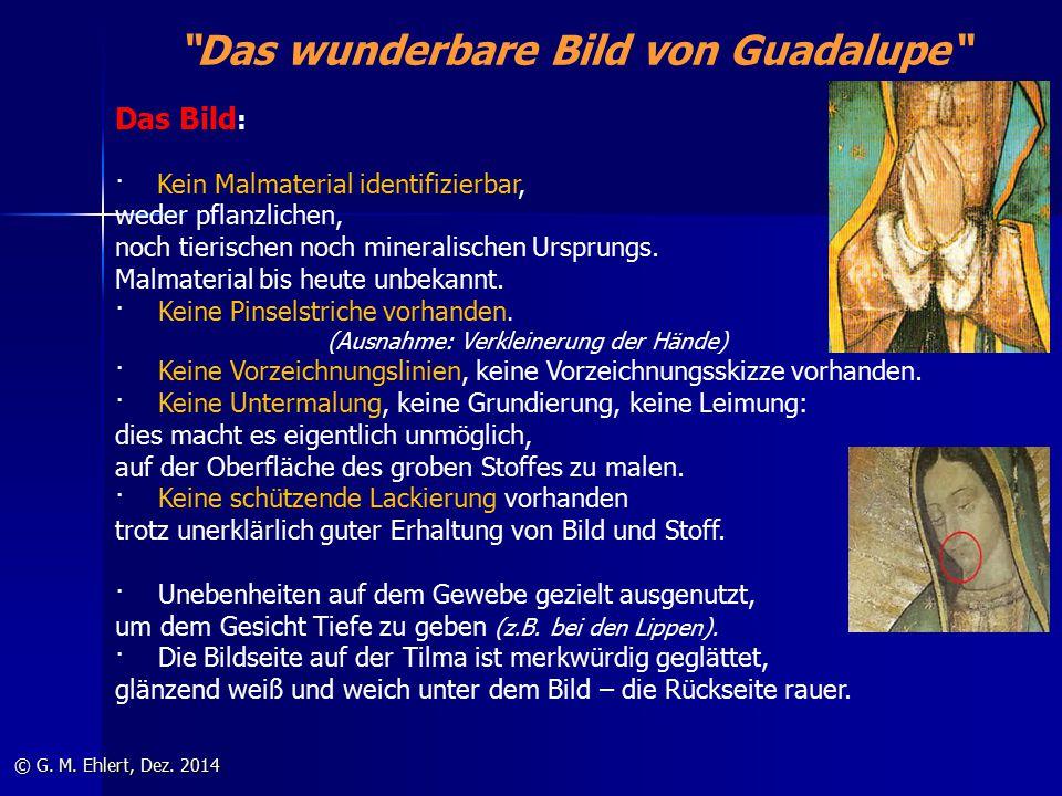 """""""Das wunderbare Bild von Guadalupe"""" © G. M. Ehlert, Dez. 2014 Das Bild : · Kein Malmaterial identifizierbar, weder pflanzlichen, noch tierischen noch"""