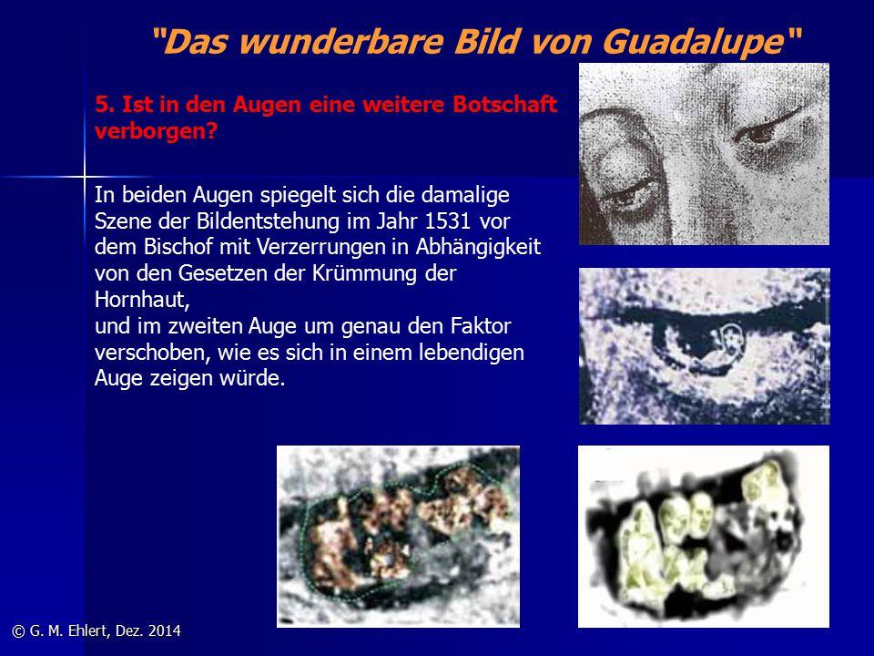"""""""Das wunderbare Bild von Guadalupe"""" © G. M. Ehlert, Dez. 2014 In beiden Augen spiegelt sich die damalige Szene der Bildentstehung im Jahr 1531 vor dem"""