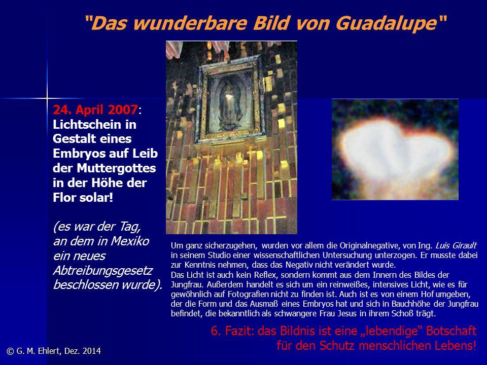 """""""Das wunderbare Bild von Guadalupe"""" © G. M. Ehlert, Dez. 2014 24. April 2007: Lichtschein in Gestalt eines Embryos auf Leib der Muttergottes in der Hö"""