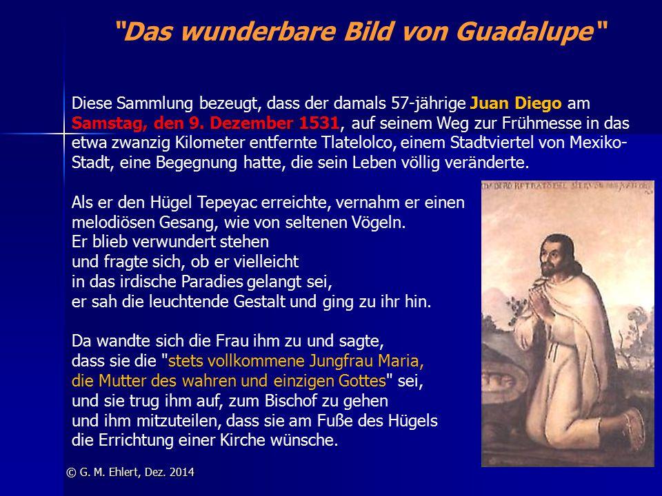 """""""Das wunderbare Bild von Guadalupe"""" © G. M. Ehlert, Dez. 2014 Diese Sammlung bezeugt, dass der damals 57-jährige Juan Diego am Samstag, den 9. Dezembe"""