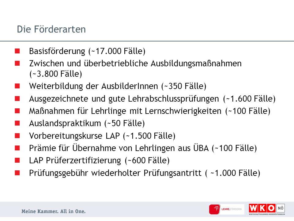 Die Förderarten Basisförderung (~17.000 Fälle) Zwischen und überbetriebliche Ausbildungsmaßnahmen (~3.800 Fälle) Weiterbildung der AusbilderInnen (~35