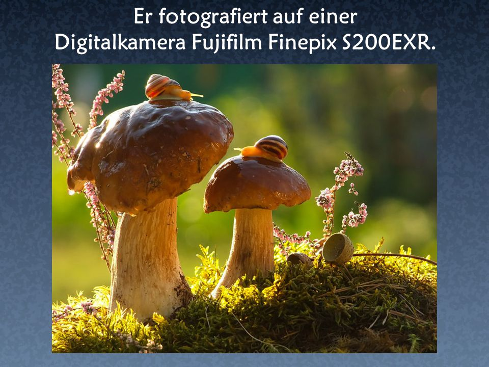 Er fotografiert auf einer Digitalkamera Fujifilm Finepix S200EXR.