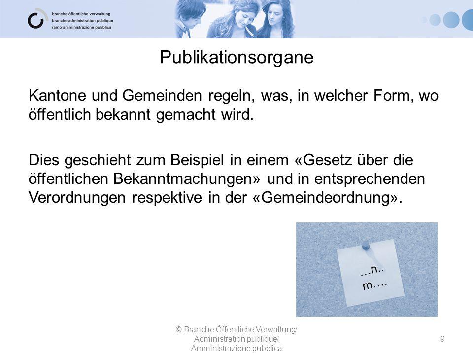 Publikationsorgane Kantone und Gemeinden regeln, was, in welcher Form, wo öffentlich bekannt gemacht wird. Dies geschieht zum Beispiel in einem «Geset
