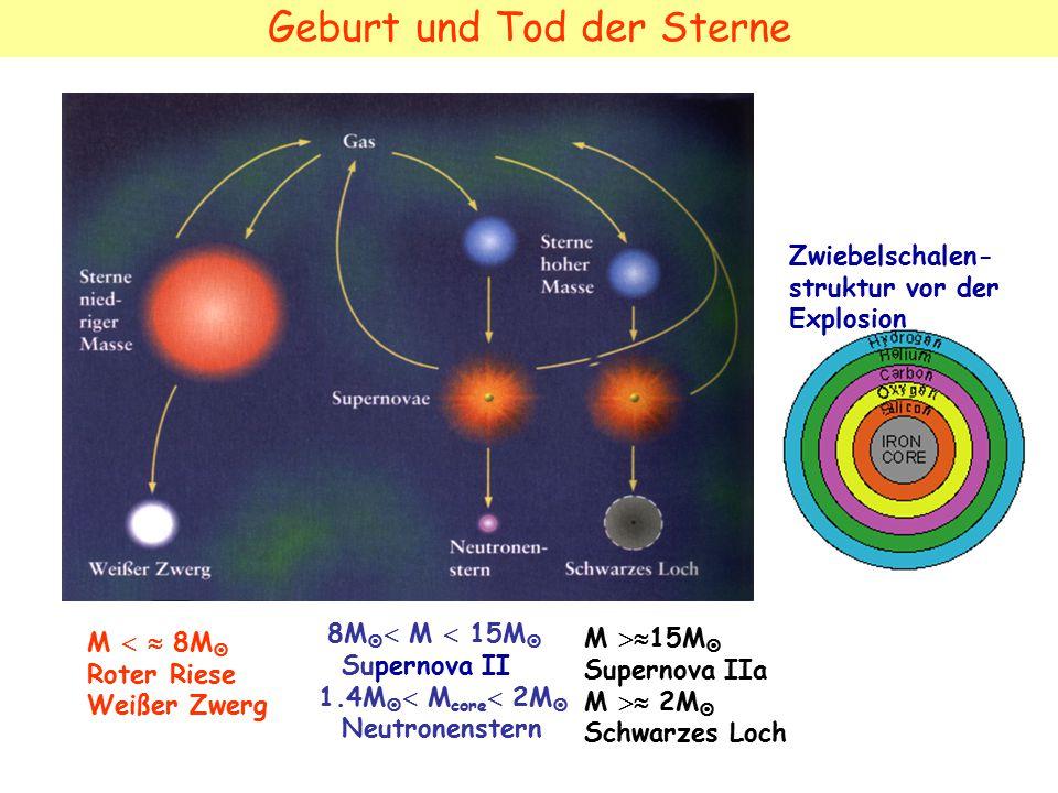 Geburt und Tod der Sterne M   8M  Roter Riese Weißer Zwerg 8M   M  15M  Supernova II 1.4M   M core  2M  Neutronenstern M  15M  Supernova IIa M  2M  Schwarzes Loch Zwiebelschalen- struktur vor der Explosion