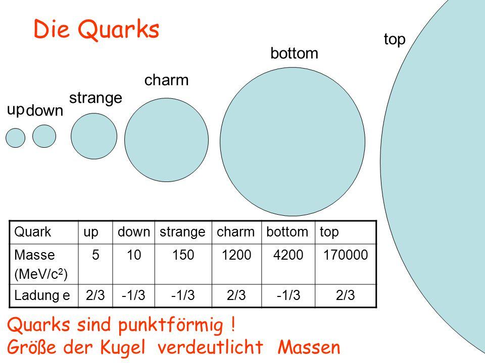 up down strange charm bottom top Die Quarks Quarks sind punktförmig .