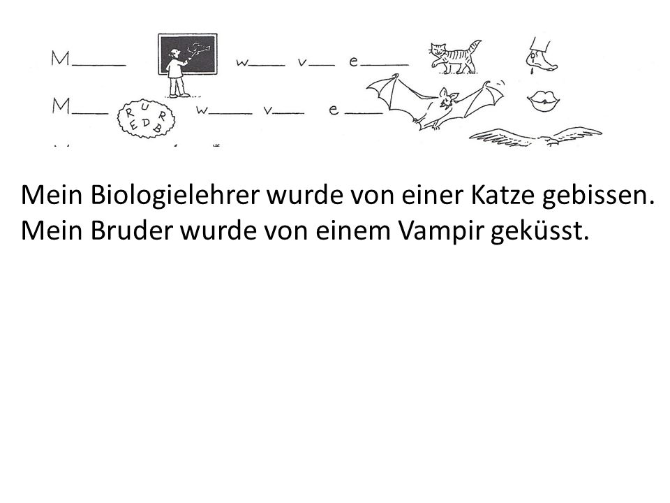 Mein Biologielehrer wurde von einer Katze gebissen. Mein Bruder wurde von einem Vampir geküsst.