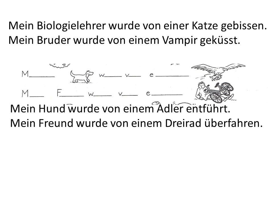 Mein Hund wurde von einem Adler entführt. Mein Freund wurde von einem Dreirad überfahren. Mein Biologielehrer wurde von einer Katze gebissen. Mein Bru