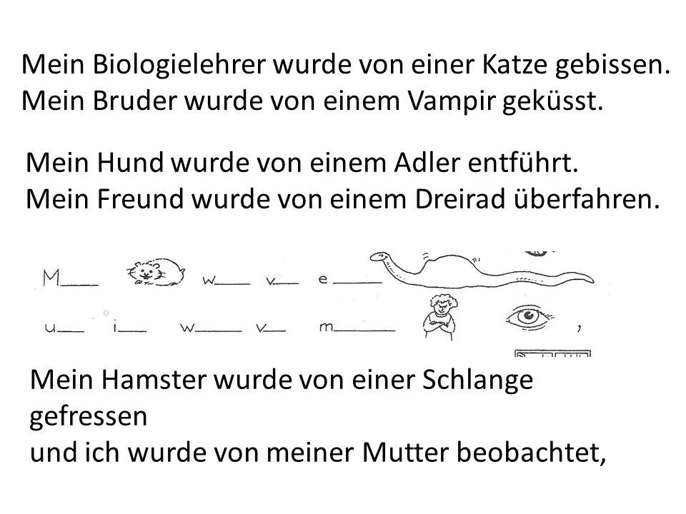 Mein Hamster wurde von einer Schlange gefressen und ich wurde von meiner Mutter beobachtet, Mein Biologielehrer wurde von einer Katze gebissen. Mein B