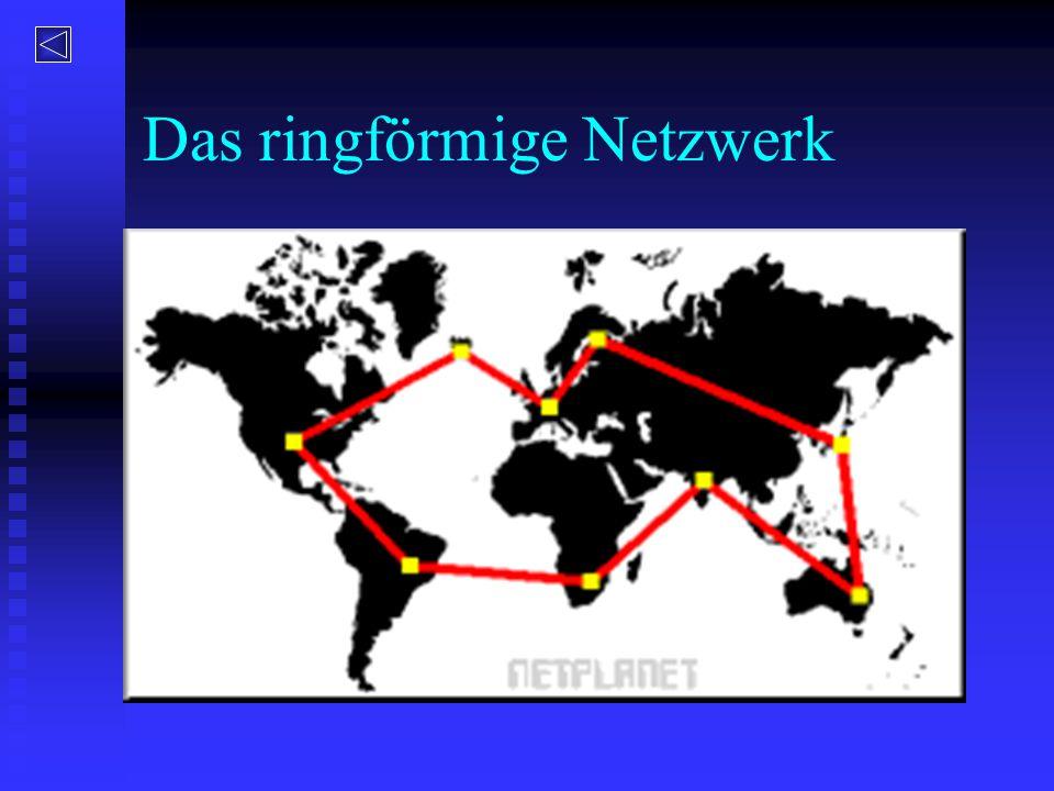 Das ringförmige Netzwerk