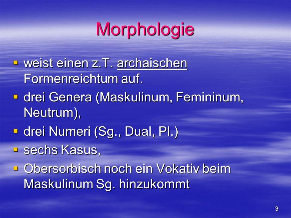 3 Morphologie  weist einen z.T. archaischen Formenreichtum auf.