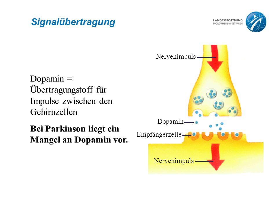 Signalübertragung Nervenimpuls Dopamin Nervenimpuls Empfängerzelle Dopamin = Übertragungstoff für Impulse zwischen den Gehirnzellen Bei Parkinson lieg