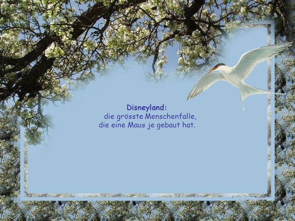 Disneyland: die grösste Menschenfalle, die eine Maus je gebaut hat.