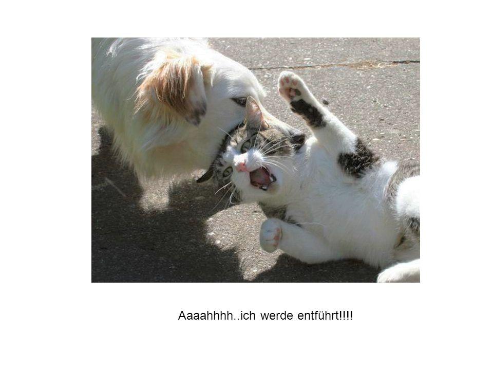 Aaaahhhh..ich werde entführt!!!!