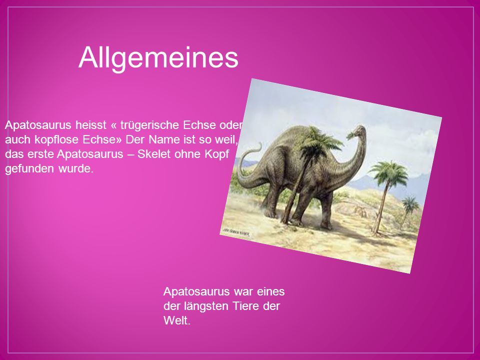 Allgemeines Apatosaurus heisst « trügerische Echse oder auch kopflose Echse» Der Name ist so weil, das erste Apatosaurus – Skelet ohne Kopf gefunden w