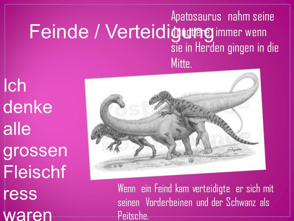 Feinde / Verteidigung Ich denke alle grossen Fleischf ress waren seine Feinde! Apatosaurus nahm seine Jungtiere immer wenn sie in Herden gingen in die