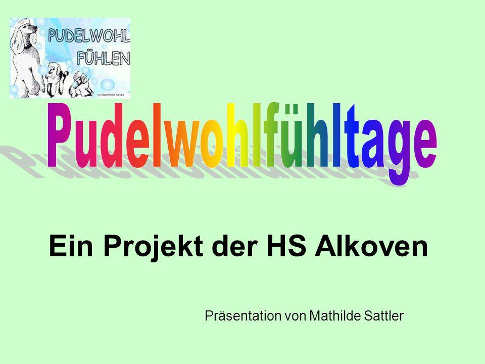 Ein Projekt der HS Alkoven Präsentation von Mathilde Sattler